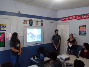 Whale shark awareness and education